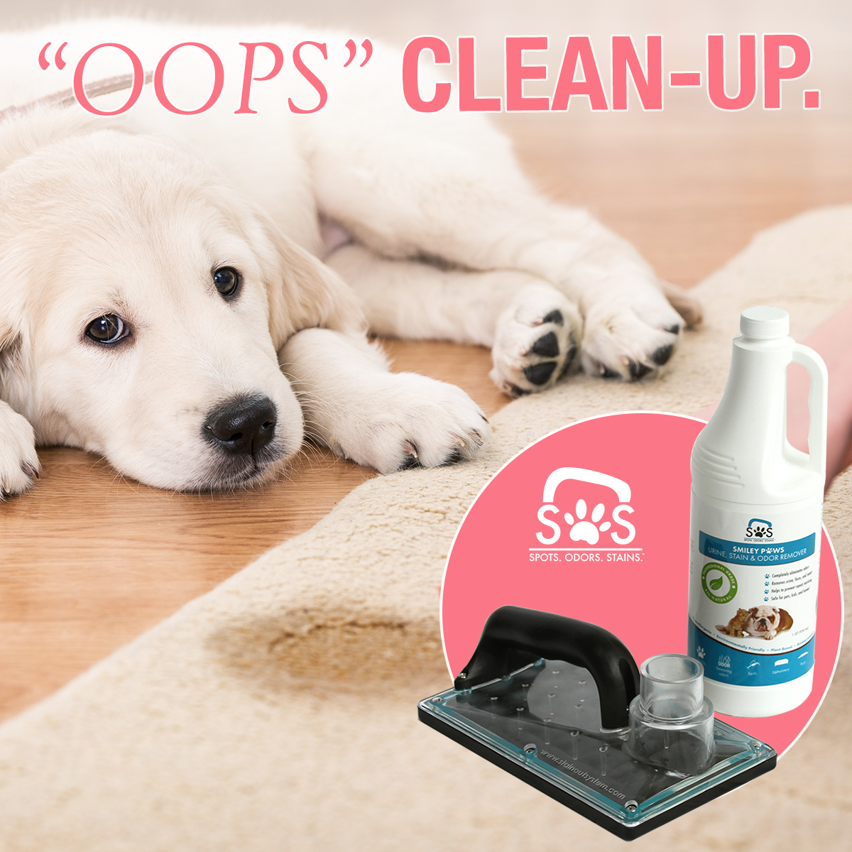Dog Smell Clean Up: OOPS Pet Clean-Up Kit For Urine, Stains, And Odors